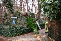 Brandweer in actie voor bomen in Beek
