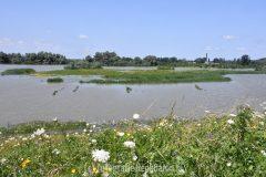 Hoogwater langs de Waal deel 3