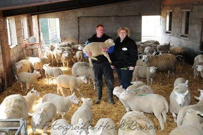 DSC_5850_schapenverriet