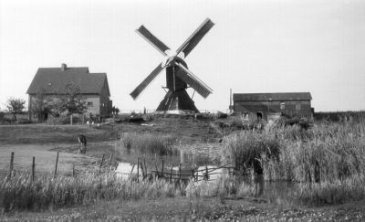 Thornse_molen_plus_huis_1