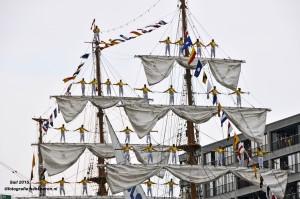 DSC_9735 Sail naam