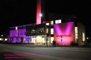 DSC_7069 gemeentehuis roze naam