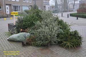 DSC_9628 kerstbomen naam